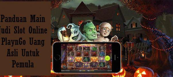 Panduan Main Judi Slot Online PlaynGo Uang Asli Untuk Pemula